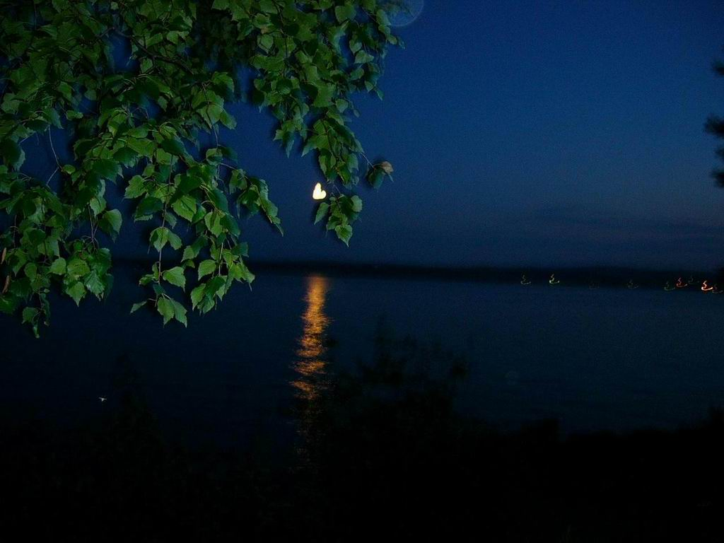 "photo ""Night"" tags: landscape, night"