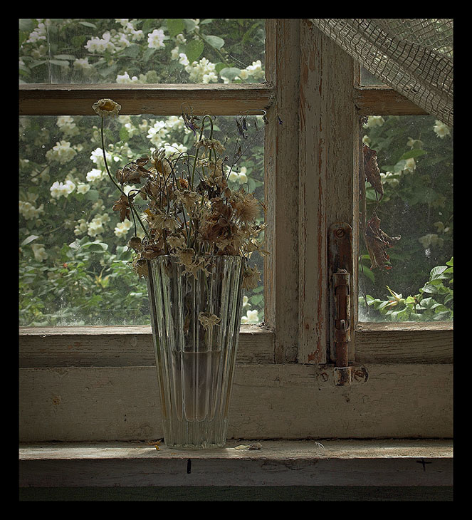 "photo ""Wood bouquet. Part II. Tristemente."" tags: still life, nature, flowers"