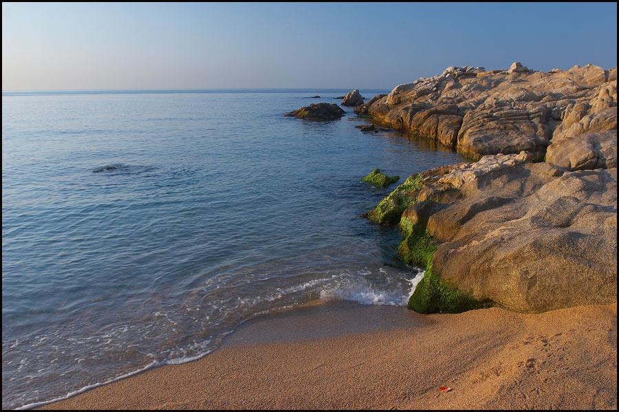 """фото """"Тёплое июльское утро."""" метки: пейзаж, вода, лето"""