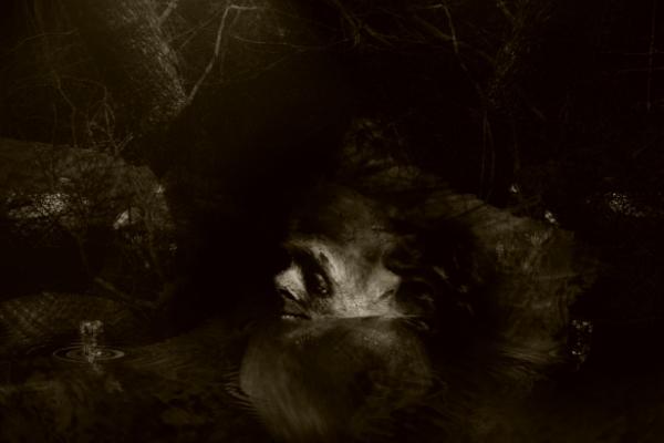 "photo ""the enigma"" tags: genre, still life,"