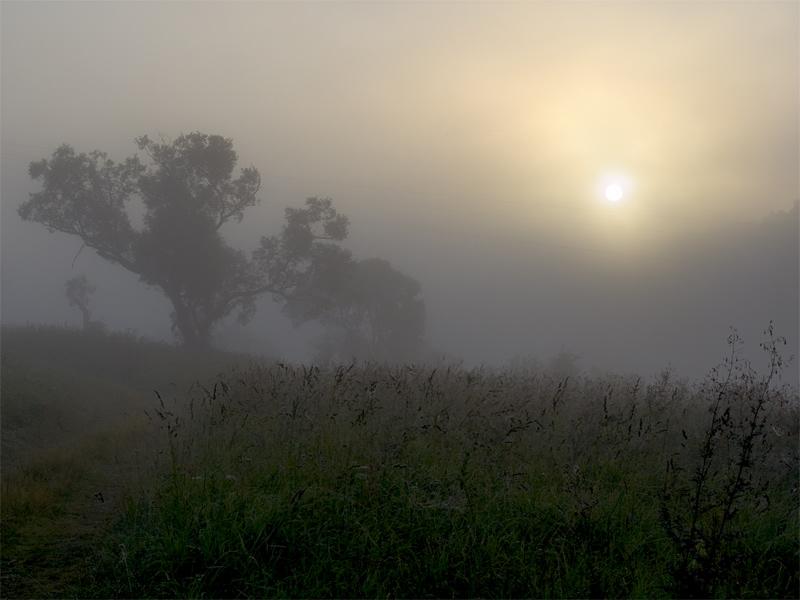 "photo ""Morning foggy (1)"" tags: landscape, sunset"
