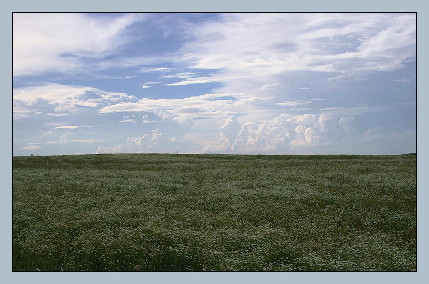 "photo ""Russian field"" tags: landscape, clouds, summer"
