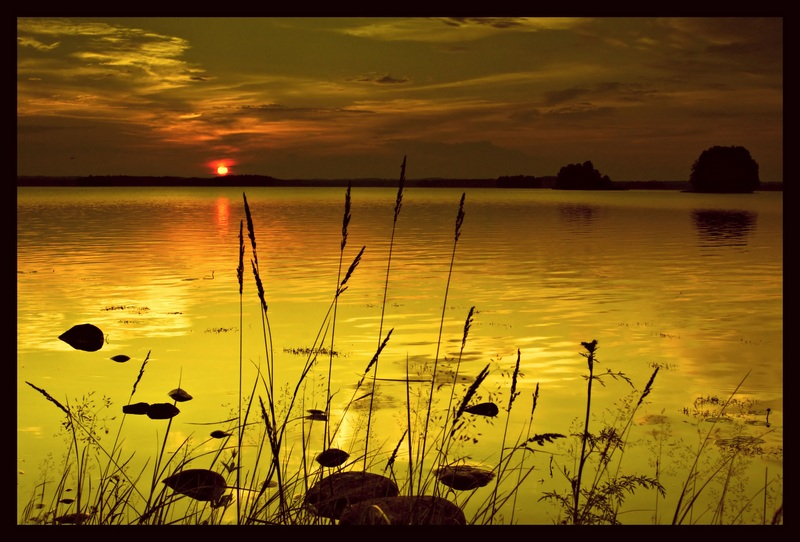 "photo ""Sunset grasses"" tags: landscape, sunset"