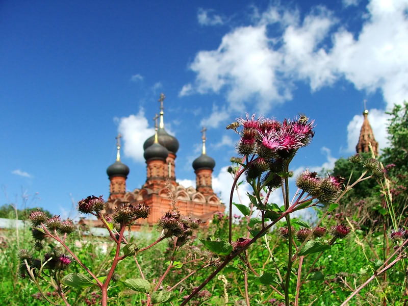 "photo ""Russian Summer"" tags: landscape, summer"