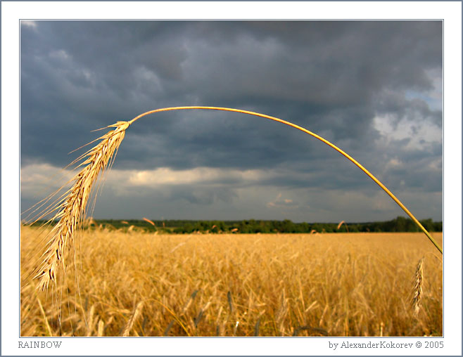 "photo ""Rainbow!!!"" tags: landscape, summer"
