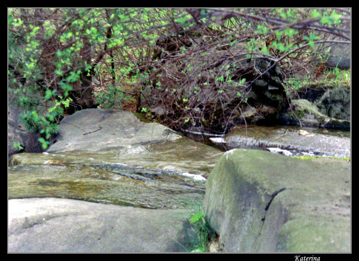 "photo ""Stone and stream"" tags: nature, landscape, flowers, water"