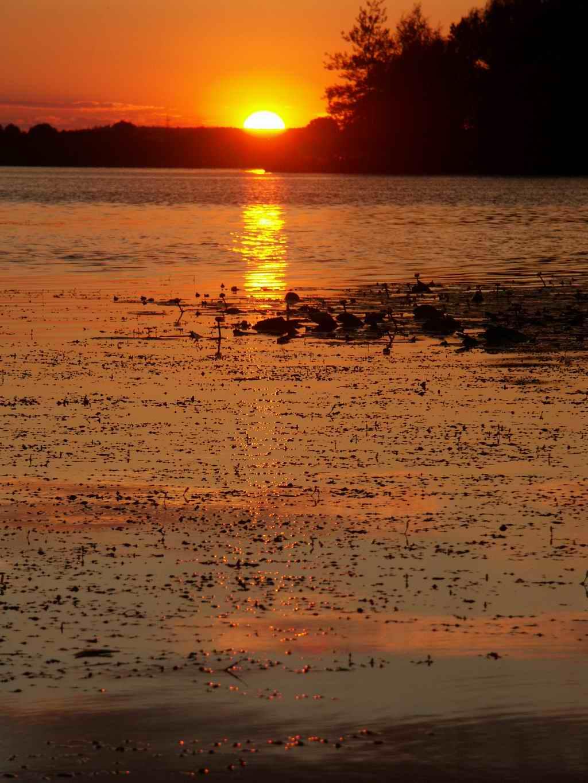 "фото ""Коричневый закат"" метки: пейзаж, закат"