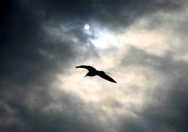 """фото """"Буря!"""" метки: пейзаж, облака"""