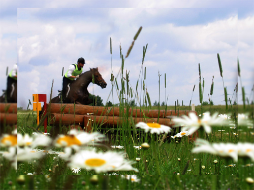 "photo ""Cross Country"" tags: genre, sport,"