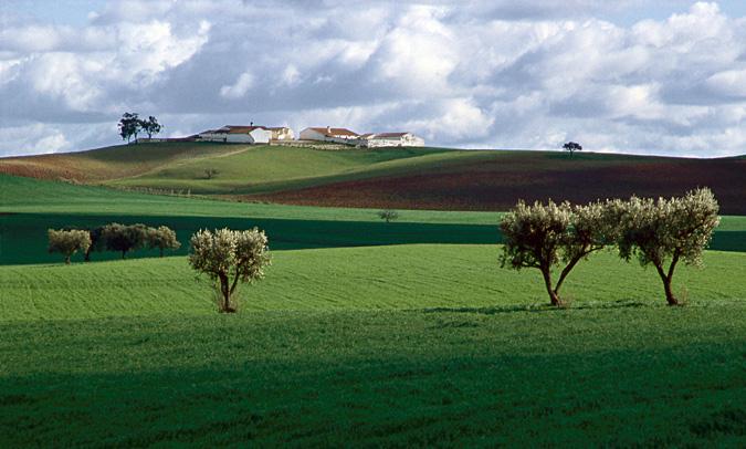 "photo ""Alentejo landscape"" tags: landscape, winter"