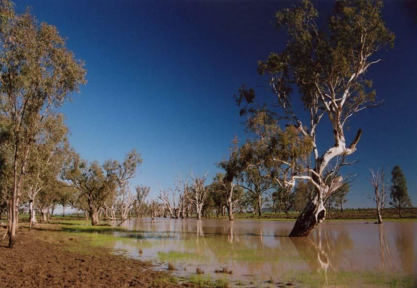 "фото ""Baan Bah"" метки: путешествия, Австралия"