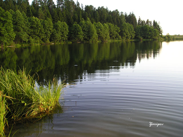 "photo ""A Lake"" tags: landscape, summer"