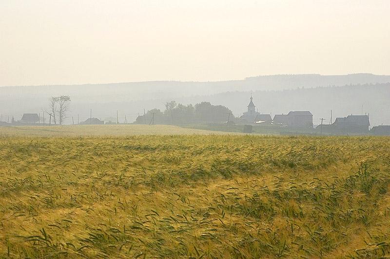 "photo ""Morning in the field near Nizhnee Selo"" tags: landscape, summer"