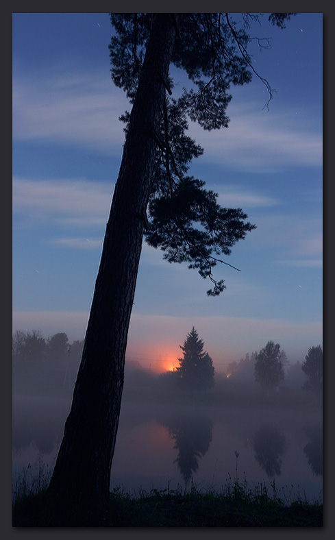 "photo ""Tree"" tags: landscape, night, water"