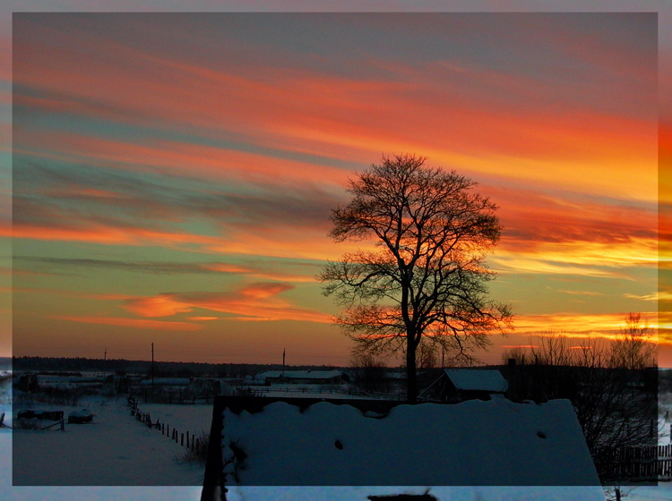 """photo """"Evening of New Year"""" tags: landscape, winter"""