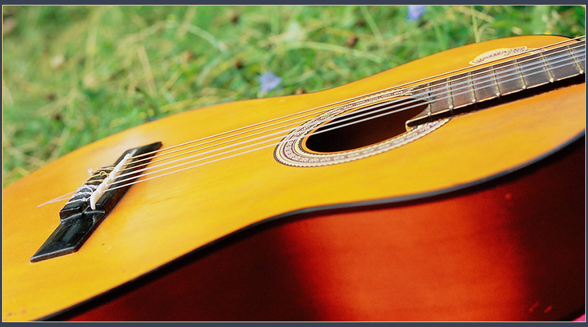 "photo ""Guitar"" tags: still life,"