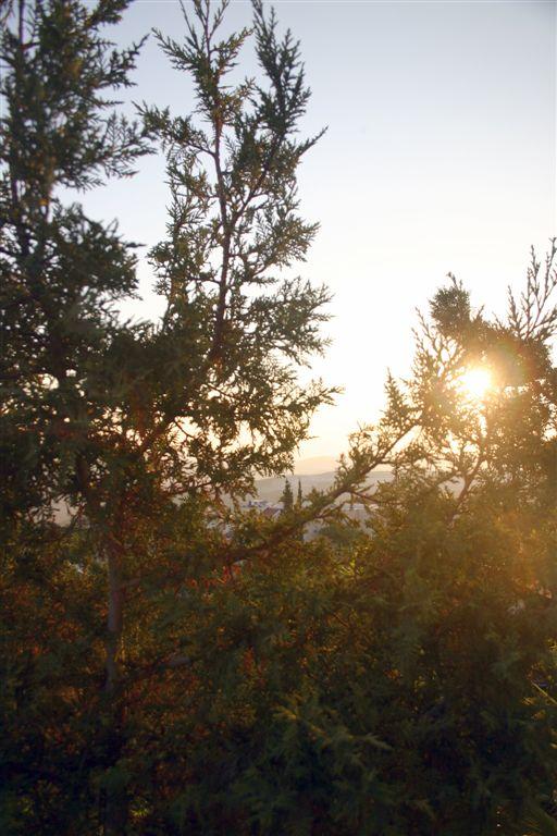 "photo ""7883"" tags: landscape, sunset"