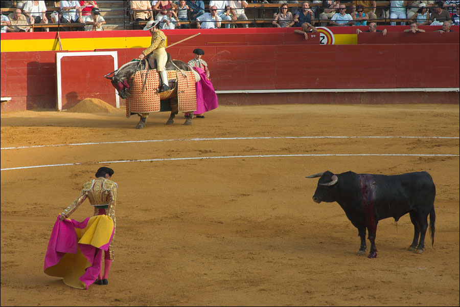 "photo ""Corrida, part 2"" tags: travel, genre, Europe"