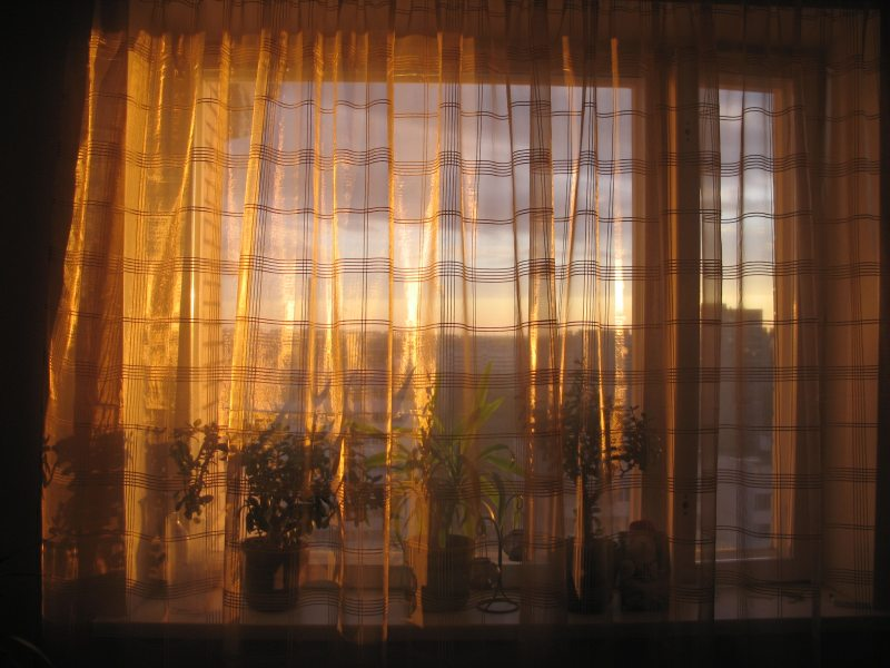 "photo ""Curtain"" tags: misc.,"