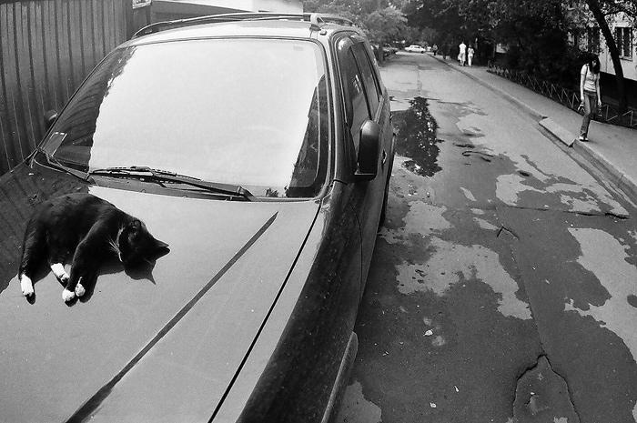 "photo ""siesta"" tags: genre, black&white,"