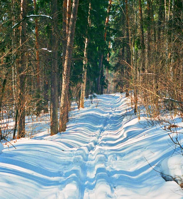 "photo ""road"" tags: landscape, forest, winter"