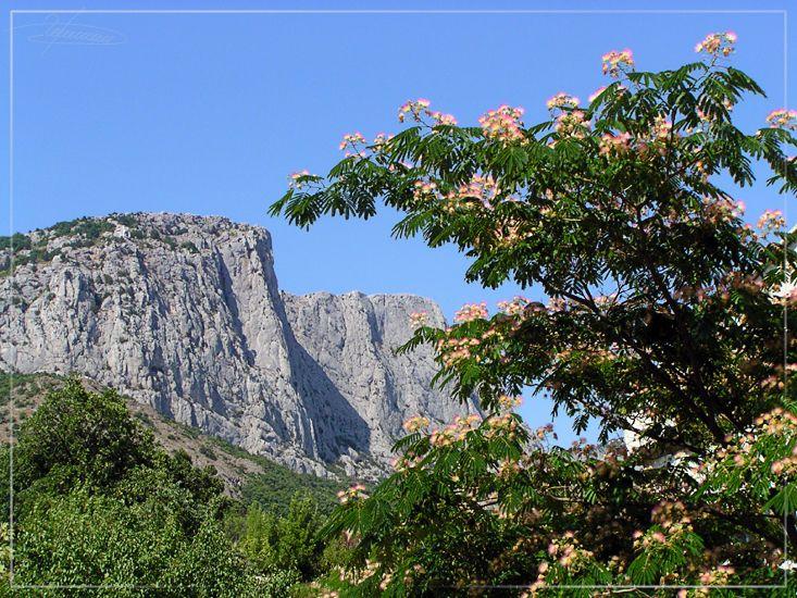 """фото """"Крым."""" метки: пейзаж, природа, горы, цветы"""