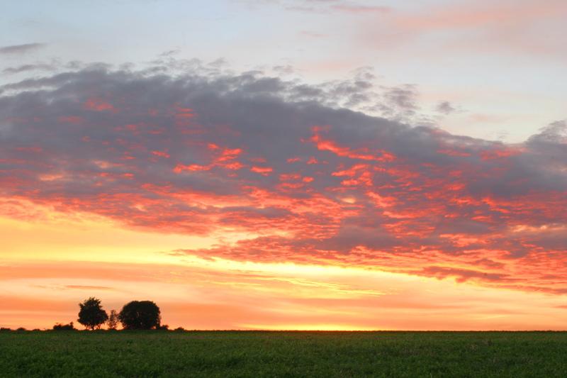 "фото ""Пламя"" метки: пейзаж, закат, лето"