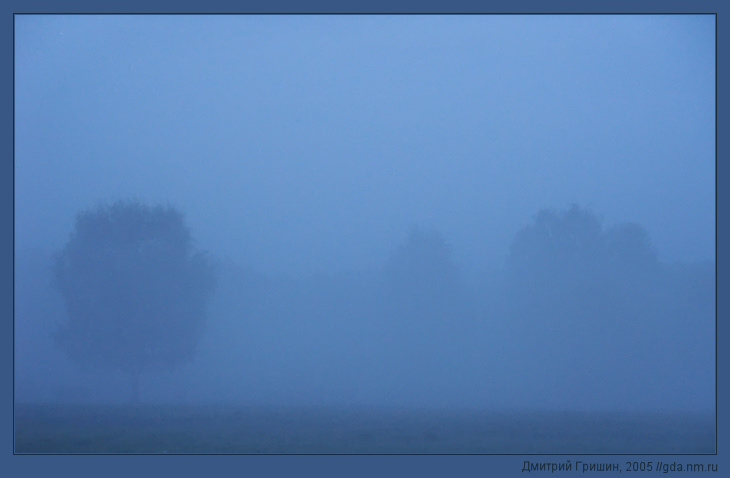 "photo ""The Fog 2"" tags: landscape, forest"