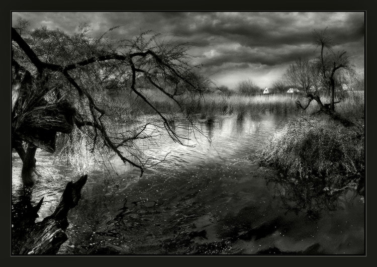 "photo ""Scenery of spring"" tags: black&white, landscape, spring"