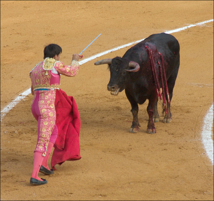 "photo ""Corrida, part 4"" tags: travel, genre, Europe"