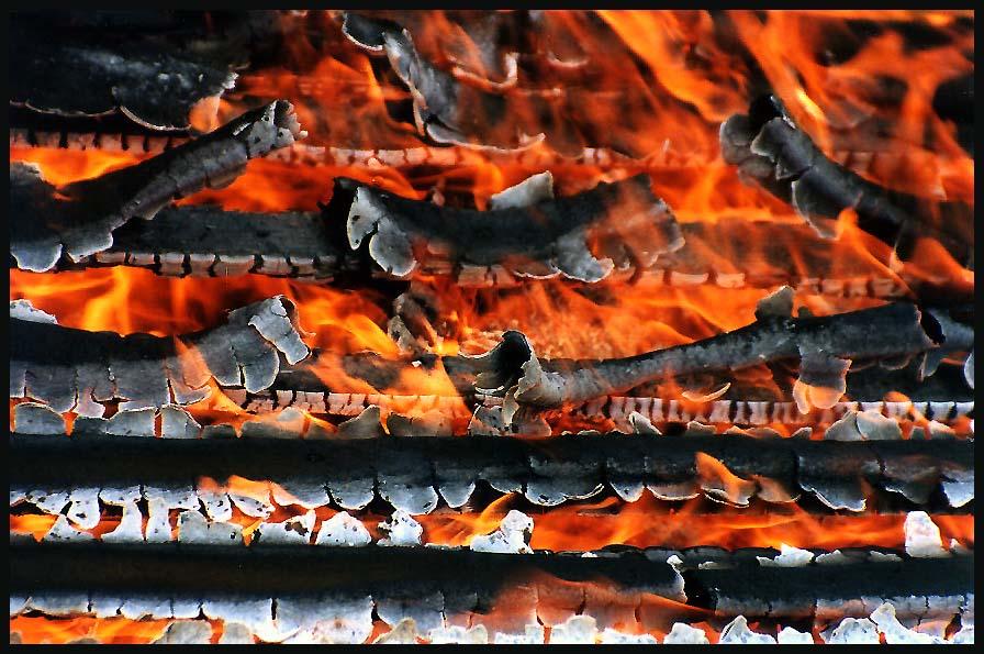 """фото """"Рисунок огнем"""" метки: пейзаж, натюрморт,"""