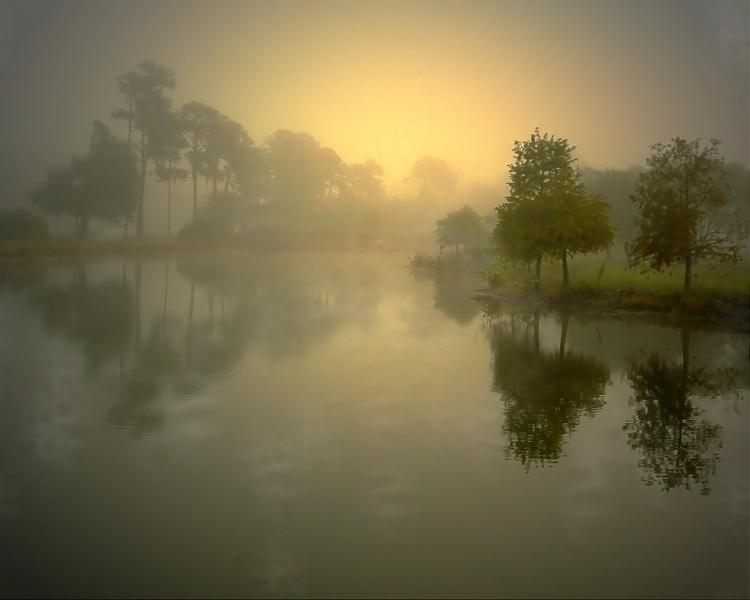 "photo ""Early, Foggy New Day"" tags: landscape, water"
