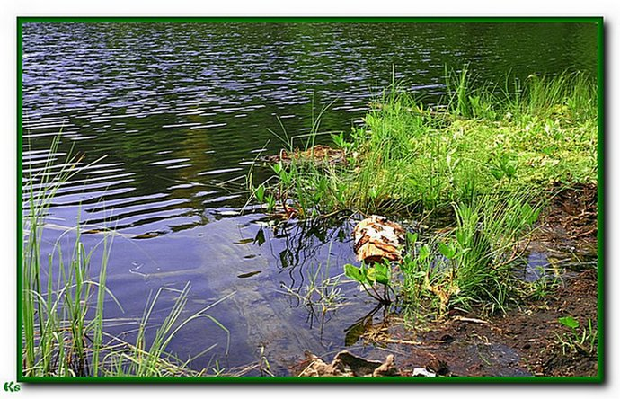 "photo ""Deep Water"" tags: landscape, water"