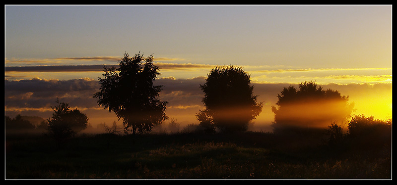 "photo ""Morning etude with a fog"" tags: landscape, forest, sunset"