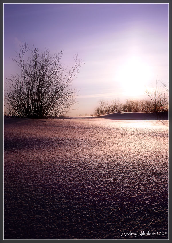 "photo ""winter etude"" tags: landscape, winter"