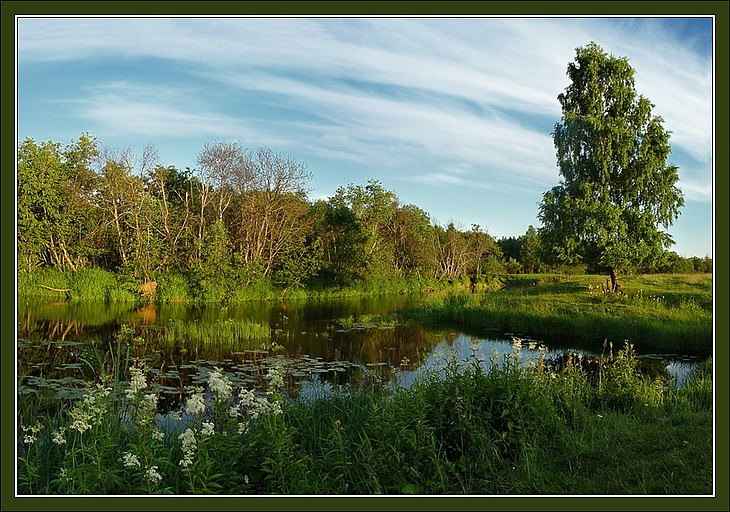 "photo ""Summer river picture"" tags: landscape, summer, water"