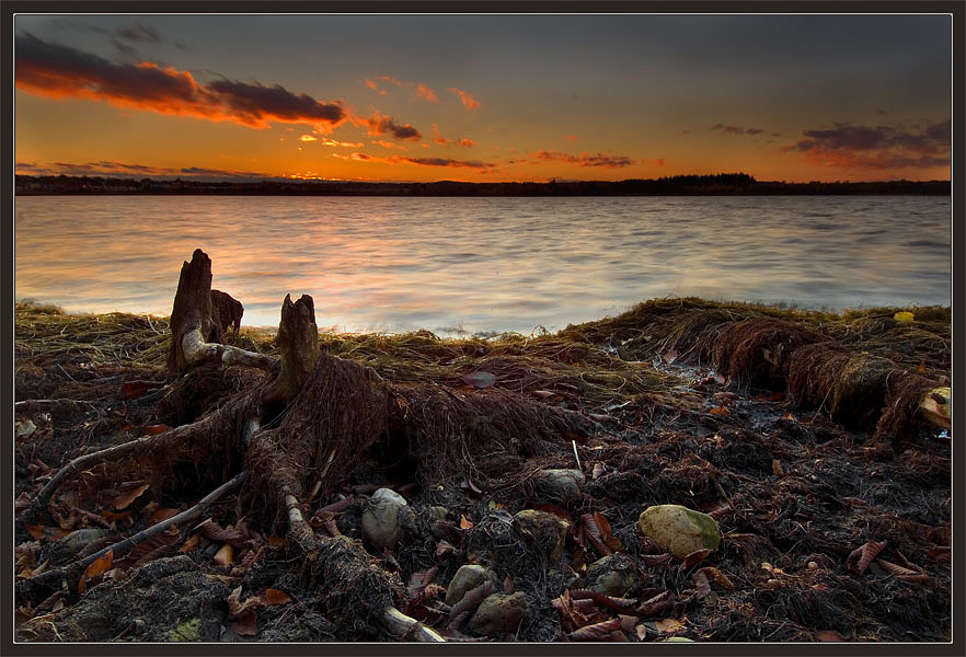 "фото ""Последний свет октябрьского дня"" метки: пейзаж, закат, осень"