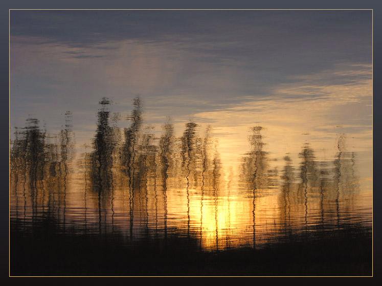 """фото """"Немного солнца в темной воде..."""" метки: пейзаж, вода, закат"""