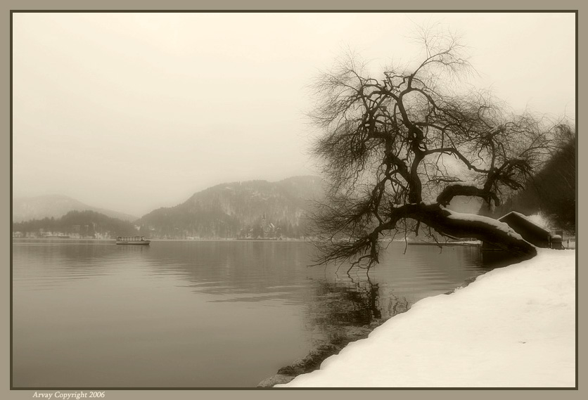 "photo ""The Mood"" tags: landscape, water, winter"