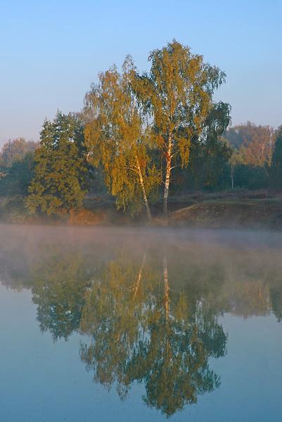 """фото """"Березки"""" метки: пейзаж, вода, лето"""