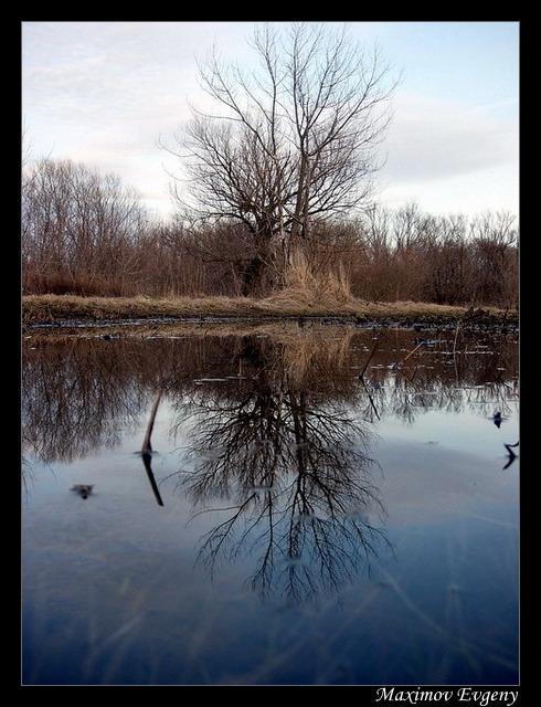 "фото ""Зеркало"" метки: пейзаж, весна, вода"