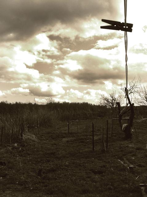 """фото """"..вот такая паршивая осень.."""" метки: пейзаж, абстракция, осень"""