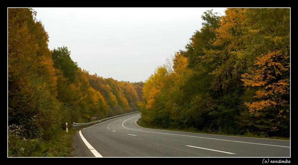 "фото ""highway"" метки: пейзаж, лес, осень"