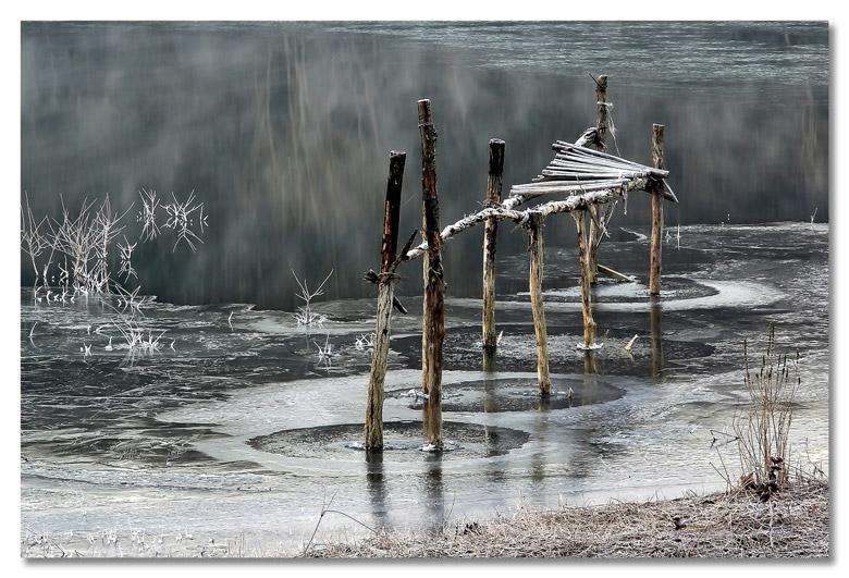 "фото ""Cold morning"" метки: пейзаж, вода, зима"