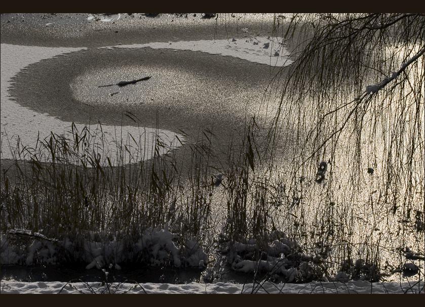 """фото """"серебряная зима"""" метки: пейзаж, зима"""