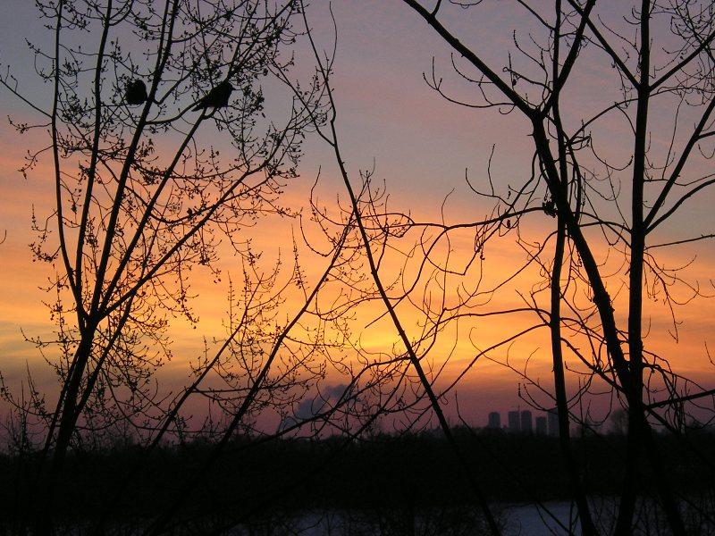 "фото ""Вид из окна.Утро. -26"" метки: пейзаж, зима, облака"