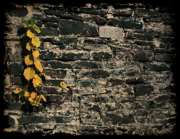 "фото ""жизнь"" метки: пейзаж, путешествия, Европа, осень"