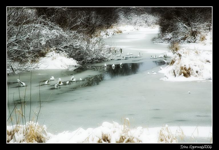 """фото """"Зима"""" метки: пейзаж, зима"""