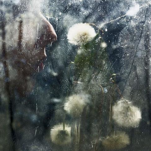 "photo ""Nose"" tags: still life,"