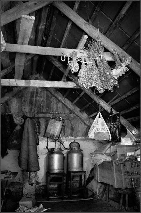 """photo """"***"""" tags: black&white, old-time,"""